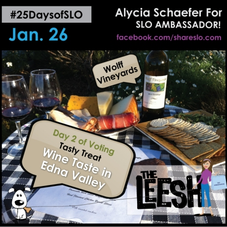 25DaysofSLO Day 2